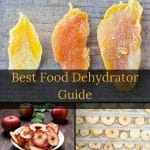 Best food dehydrator 2020